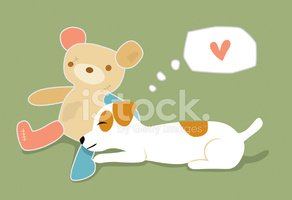 Jack Russell Terrier,Dog,Pu...