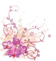 Orchid,Flower,Knick Knack,P...