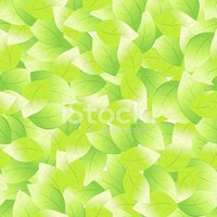 Leaf,Seamless,Backgrounds,G...