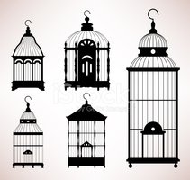 Birdcage,Cage,Old-fashioned...