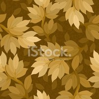 Pattern,Autumn,Leaf,Tree,Wa...