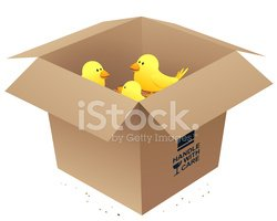 Box - Container,Inside Of,C...
