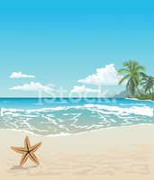 Beach,Starfish,Tree,Sky,Tra...
