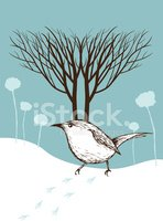 Winter,Tree,Bird,Snow,Footp...