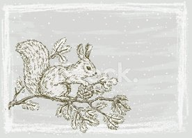 Squirrel,Pine Cone,New Year...