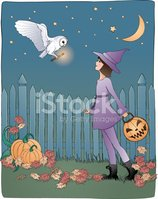 Witch,Owl,Halloween,Little ...