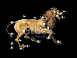 Constellation,Star Chart,Le...