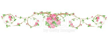Rose - Flower,Frame,Garland...
