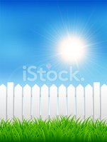 Summer,Picket Fence,Playing...