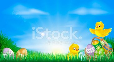 Easter,Young Bird,Baby Chic...