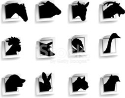Silhouette,Dog,Horse,Domest...