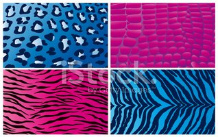 Animal Print,Pink Color,Zeb...