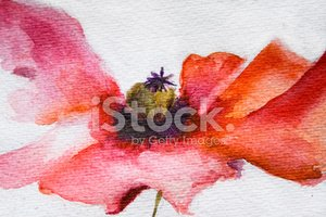 Watercolor Painting,Flower,...