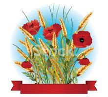 Wheat,Color Image,Poppy,Inv...