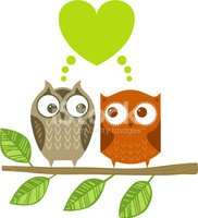 Owl,Branch,Cute,Vector,Vale...