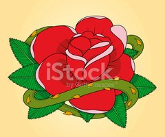 Rose - Flower,Tattoo,Rock a...