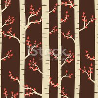 Birch Tree,Pattern,Tree,Tre...