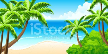 Palm Tree,Beach,Idyllic,San...