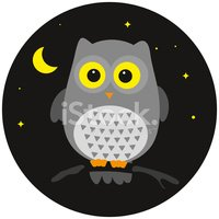 Owl,Sleeping,Moon,Night,Ani...