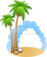 Tree,Coconut Palm Tree,Palm...