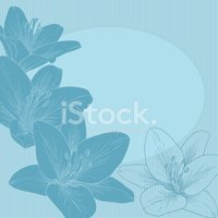 Flower,Greeting Card,Lily,B...