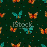 Pattern,Butterfly - Insect,...