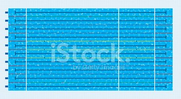 Olympic size swimming pool stock vectors - Olympic size swimming pool dimensions ...