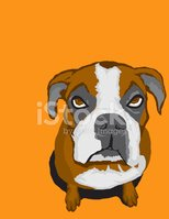 Dog,Boxer,Cartoon,Pets,Chil...
