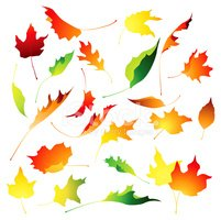 Leaf,Autumn,Wind,Flying,Vec...