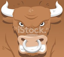 Bull - Animal,Anger,Stock M...