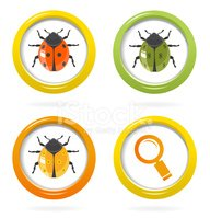 Insect,Magnifying Glass,Col...