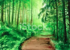 Watercolor Painting,Forest,...