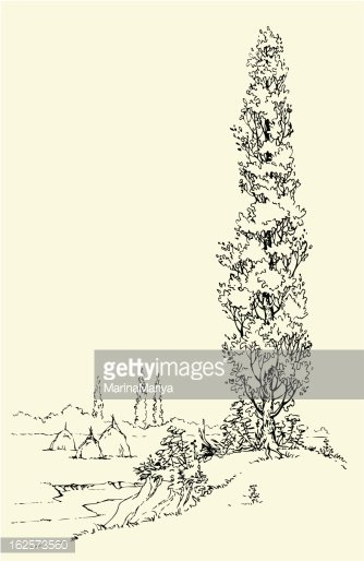 Vector Poplar on The Hill Near River stock vectors - Clipart.me