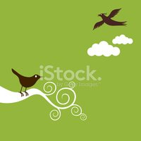 Bird,Life,Branch,Green Colo...