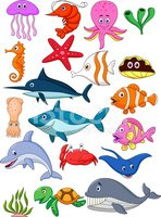 Sea Life,Cartoon,Dolphin,Fi...