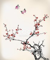 ink style butterfly and winter sweet