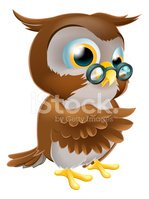 Owl,Standing,Showing,Pointi...