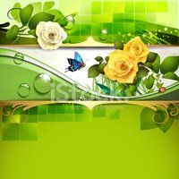 Leaf,Nature,Rose - Flower,F...