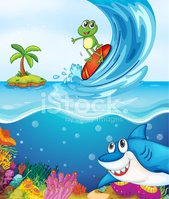 Sea,Frog,Below,Shark,Island...