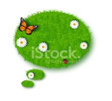 Insect,Bubble,green grass,I...