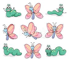 Larva,Butterfly - Insect,Cr...