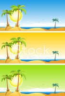 Beach,Tropical Climate,Land...