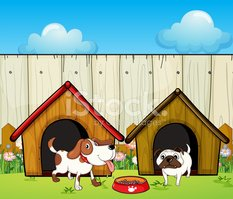 Pets,Front or Back Yard,Gra...