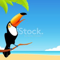 illustration of a happy toucan bird with tropical background