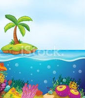 coral and palm tree on island