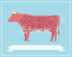 Beef,Cutting,Cow,Diagram,Me...