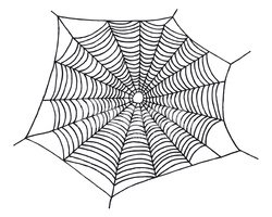Spider Web,Black And White,...