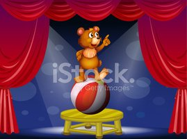 Catwalk - Stage,Bear,Cub,Bl...