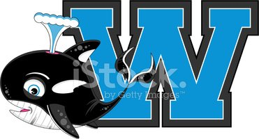Cute Killer Whale Learning Letter W Stock Vectors Clipart Me
