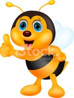 Bee,Standing,Young Animal,S...